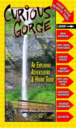 Curious Gorge 4th Edition Book