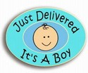 0052-Just-Delivered-Its-a-Boy-Stork-Pride-Pin-Handcrafted_97326A.jpg