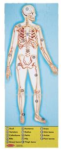 0445--Human-Body-100pc-Floor-Puzzle-by-Melissa--Doug_11793B.jpg