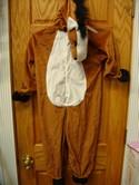 Forum-Horse-Costume-8-10_202310C.jpg