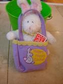 Gund-Sunshine-Pals-Happy-Hoppy-Easter-Bunny-Rabbit-in-Bag-Basket_170657A.jpg