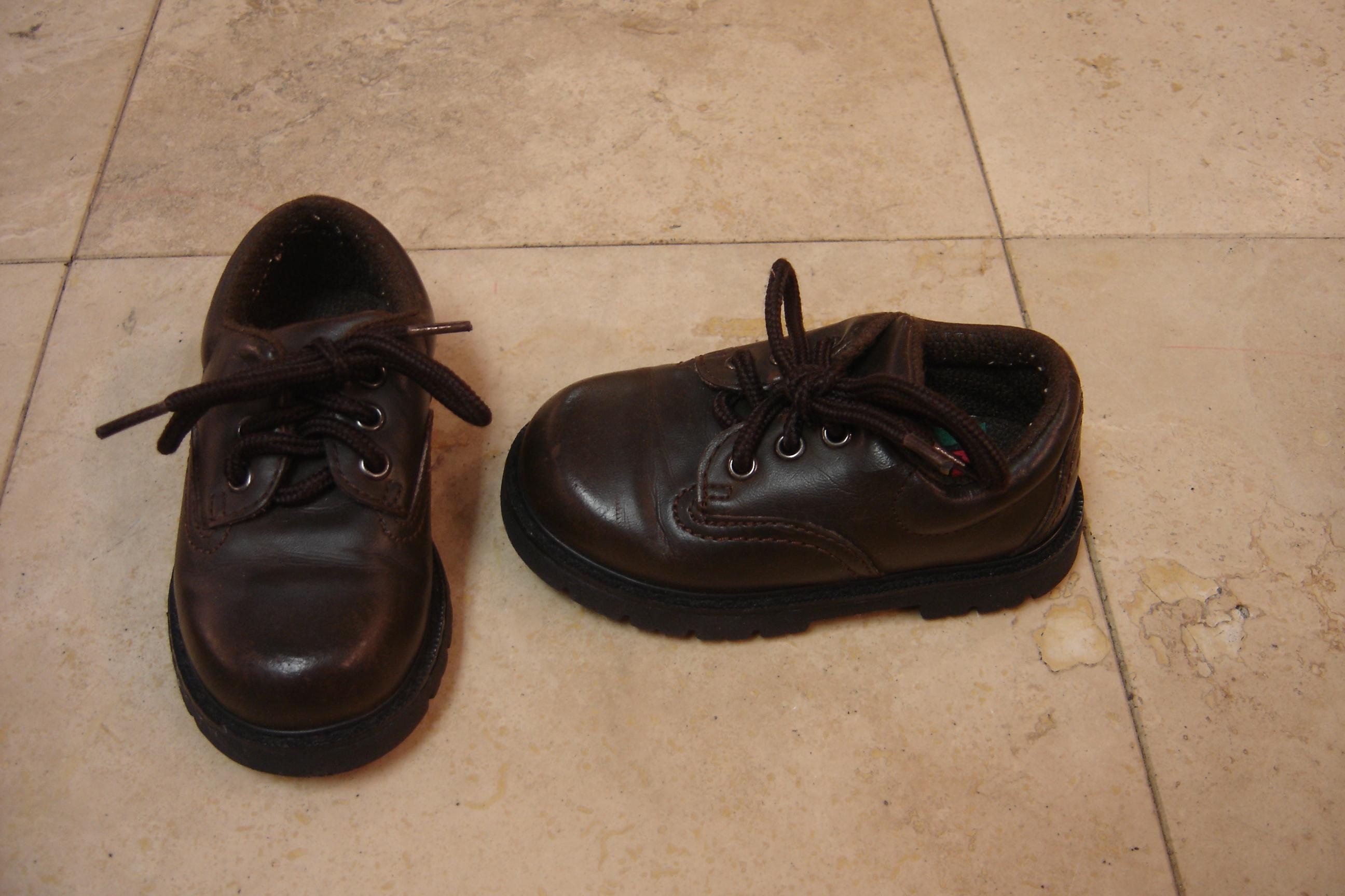 Munchkin Boys Toddler Kids Size 5 5 Dark Brown Lace Loafer Dress