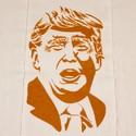 OsoCozy-Politician-on-a-Prefold-Unbleached-DSQ-Dump-on-TRUMP-Choose-Size_196425B.jpg