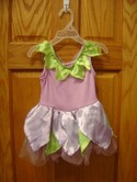 Princess-Expressions-12-14-M-Purple-and-Green-Fairy-Costume_187273A.jpg