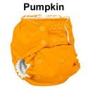 Rumparooz-One-Size-Pocket-Diaper-Snaps-OS-6-35lbs-Choose-Color_183124M.jpg
