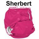 Rumparooz-One-Size-Pocket-Diaper-Snaps-OS-6-35lbs-Choose-Color_183124O.jpg