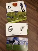 Flash-of-Brilliance-Educational-Alphabet-ABC-Flash-cards_3996747C.jpg