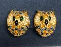 Joan-Rivers-Multi-Color-Rhinestone-Gold-Tone-Owl-Clip-On-Earrings_33827A.jpg