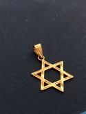 Michael-Anthony-14k-Yellow-Gold-Diamond-Cut-Star-of-David-Jewish-Star-Pendant_33687C.jpg