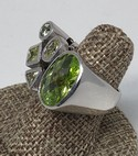 Sterling-Silver-Multi-Shape-5-Stone-Peridot-Quartz--Ring-Size-6_34511B.jpg