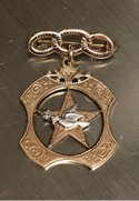 Victorian-10K-Gold-IOOF-Past-Noble-Grands-Jewel-of-the-Rebekah-Lodge-BroochPin_33521A.jpg
