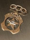 Victorian-10K-Gold-IOOF-Past-Noble-Grands-Jewel-of-the-Rebekah-Lodge-BroochPin_33521B.jpg