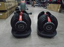 New-Rising-Gym-52.5-LB-Adjustable-Dumbbell-Set_118512C.jpg