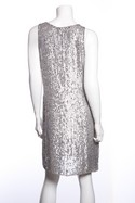 Calypso-Silver-Sequin-Sleeveless-Dress-SZ-S_32518C.jpg