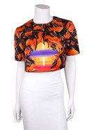 Peter-Pilotto-Black--Orange-Box-Fit-Crop-Top_21186A.jpg