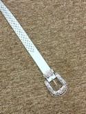Belt_15948A.jpg